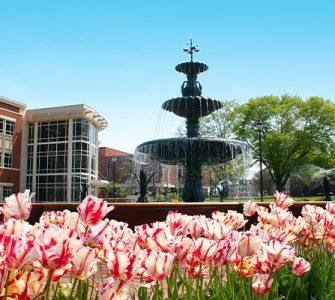 Summerville fountain in spring