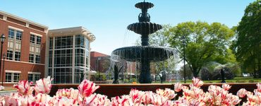 Summerville fountain in spring